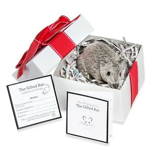 Details About Fake Furry Gray Rat Mouse Realistic Prank Funny Birthday Gift Valentine