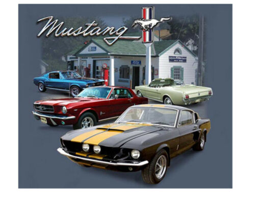 Ford Mustang Station service automobile voiture TEE Ford