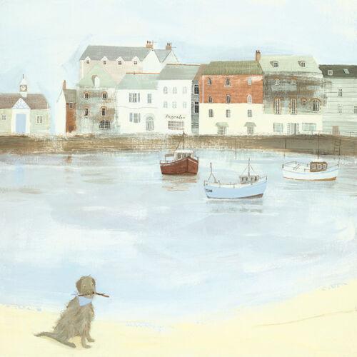 Cornish Sea Dog Ready Framed Canvas 40x40cm Hannah Cole