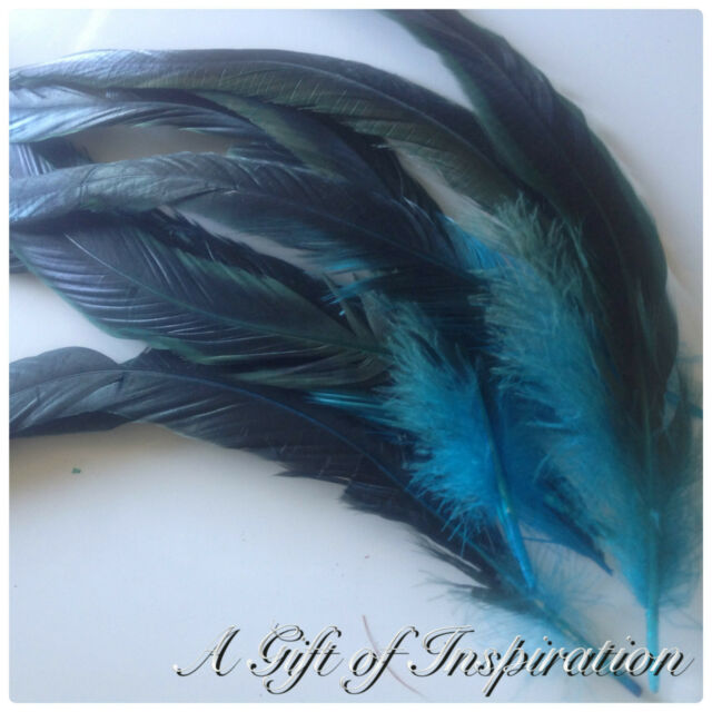 10 Aqua Blue Rooster Coque Feathers 20-33cm DIY Craft Millinery Vase Costume
