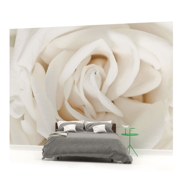 WALL MURAL PHOTO WALLPAPER PICTURE (410PP) Flowers Flower Floral