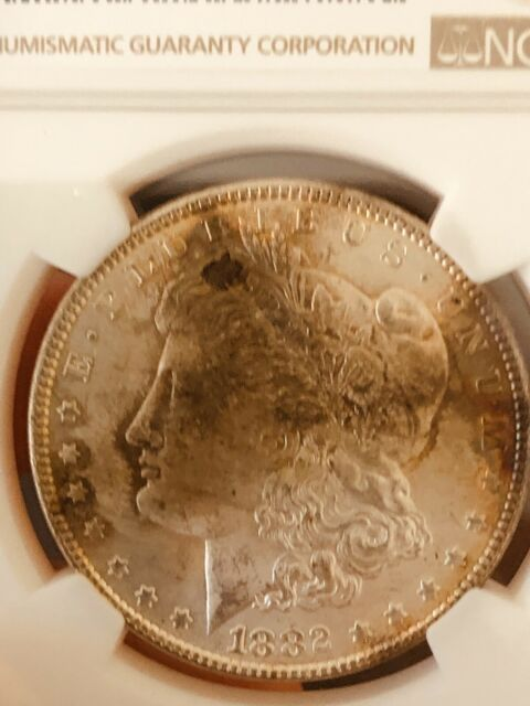 1882-P Morgan Silver Dollar NGC MS64 Gorgeous Original Toned