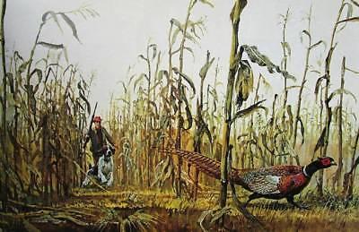 Hunting Pheasants in Nebraska Corn Field by Bob Kuhn