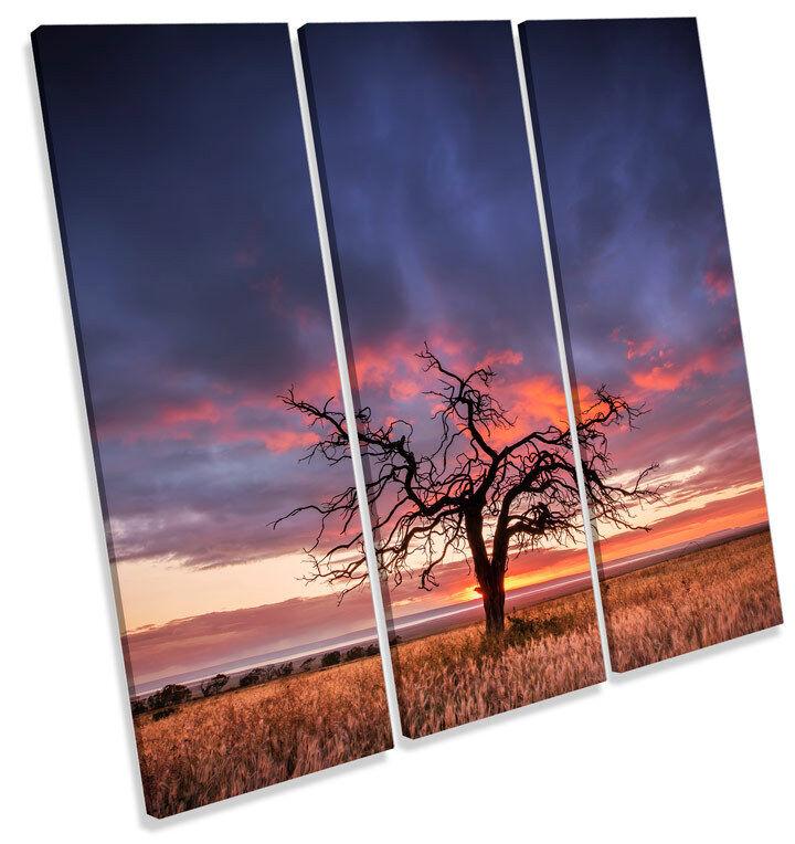 Puesta de sol paisaje arte árbol TREBLE LONA pared arte paisaje Foto impresión Cuadrado 795f91