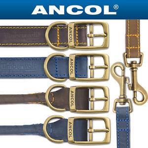 Ancol-Timberwolf-Cuero-Collares-amp-lidera-todas-las-tallas-Azul-o-sable-Marron