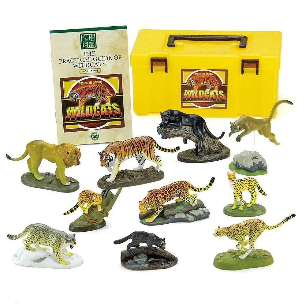 colorata 3D Real Figure Box Endangered Animals Wild Cats Action Figure Japan F S