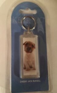 Cheeky-Jack-Russell-Terrier-puppy-dog-keyring-acrylic-double-sided
