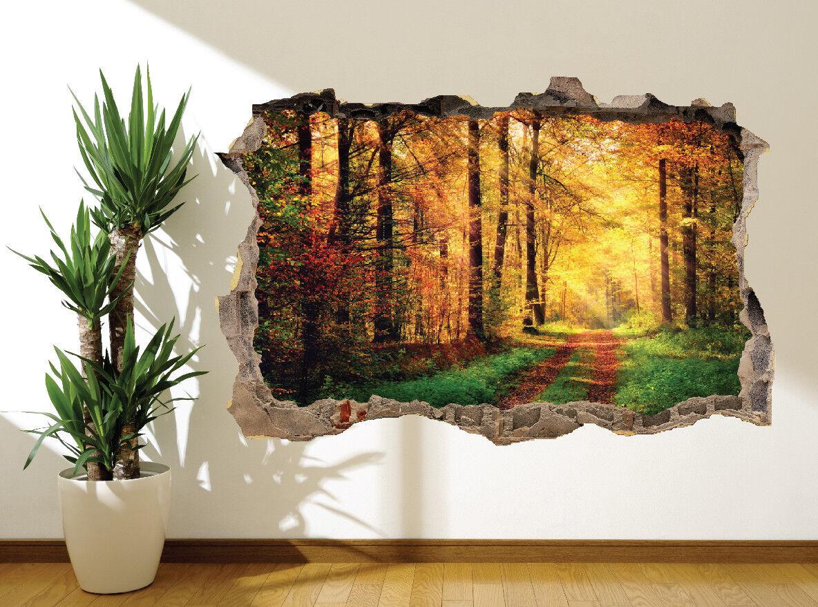 Schöne Rennbahn durch ein Sonne Gewaschen Wald Wandaufkleber Wandbild (45080994)