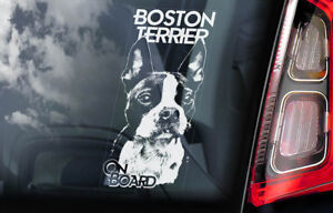 Boston-Terrier-Auto-Finestrino-Adesivo-Americana-Cane-Carlino-a-Bordo