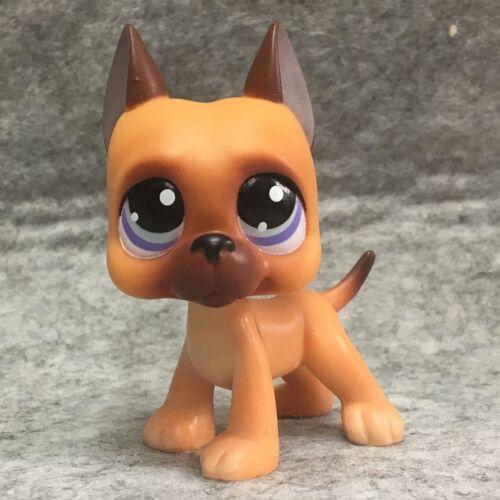 Littlest Pet Shop Brown Orange Great Dane Dog Blue Eyes Rare LPS233