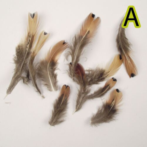 Natural Unique Bird Feathers for Craft Fly Tying