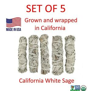 White-Sage-Smudge-Stick-4-034-SET-OF-5-Bundle-House-Cleansing-Energy-Clearing