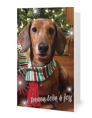 Miniature Dachshund Birthday Greeting Card Animal Rescue Scrappy Dizzle Designz