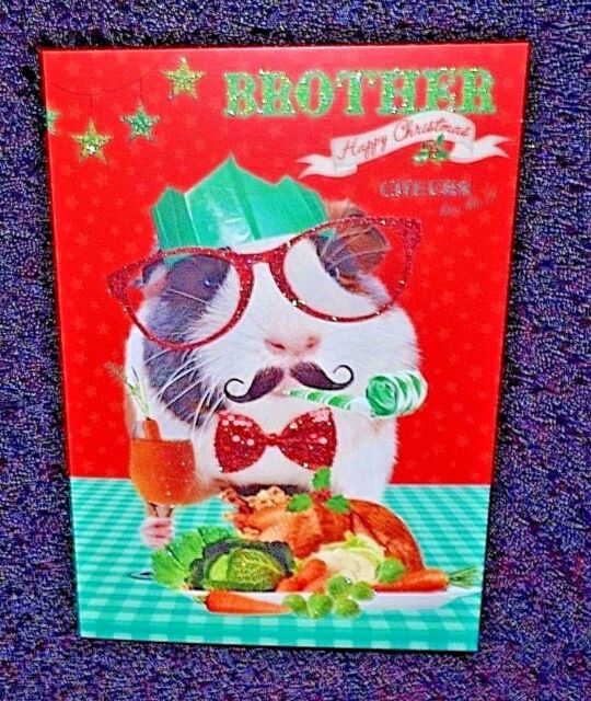 New Humorous/Funny Brother Christmas greetings card