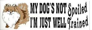 BUMPER-STICKER-MY-DOG-039-S-NOT-SPOILED-I-039-M-JUST-WELL-TRAINED