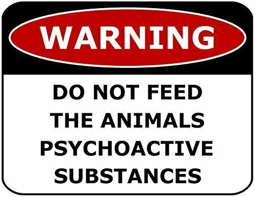 WARNING DO NOT FEED THE ANIMALS PYSCHOACTIVE SUBSTANCES Laminated Funny Sign