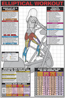 Elliptical Trainer Professional Cardio Instructional Fitness Wall Chart Poster