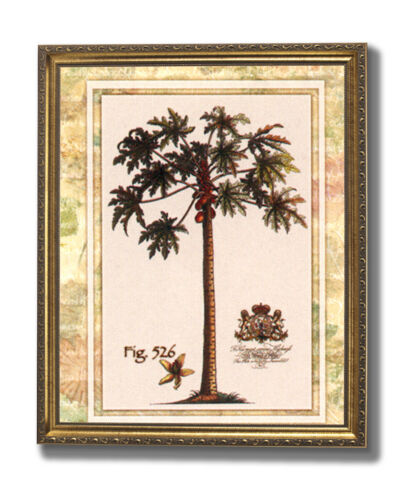 Tropical Palm Tree Fig 526 Contemporary Wall Picture Gold Framed Art Print