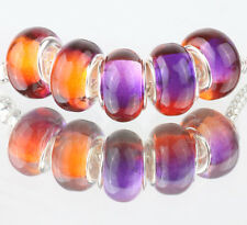 5pcs SILVER MURANO LAMPWORK Beads Fit European Charm Bracelet DIY #D511