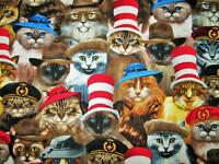 Timeless Treasures Quilting Sewing Fabric Cats In Hats Animal Bty 3290