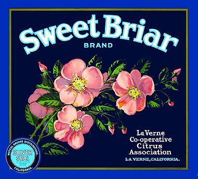La Verne Lordsburg Sweet Briar Roses Orange Citrus Fruit Crate Label Art Print