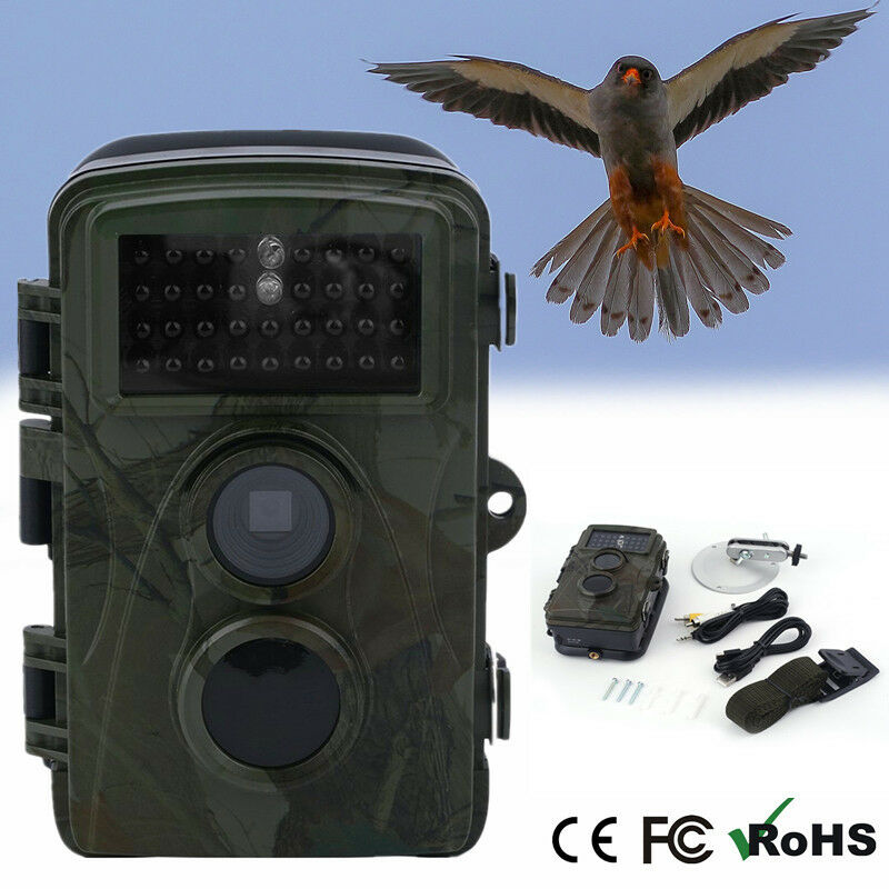 FULL HD JagdKamera 20m IR Tierwelt Jagd Wildtier Kamera Trail Wildkamera IP66 UP