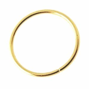 Nose Ring 10k Yellow Gold 8mm Continuous Split Ring Tragus 22g