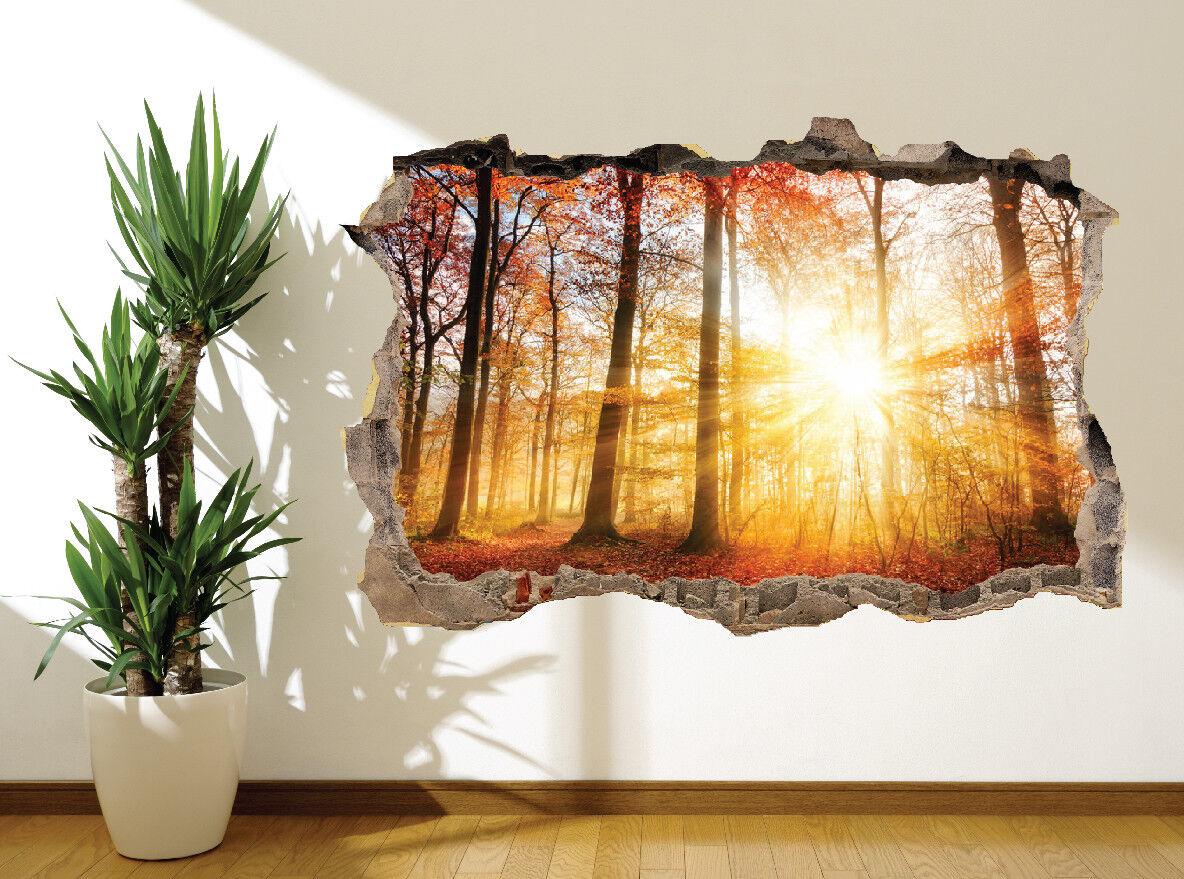 Schöne Sonnenaufgang in einer Herbst Wald Wandaufkleber Wandbild (45080526)