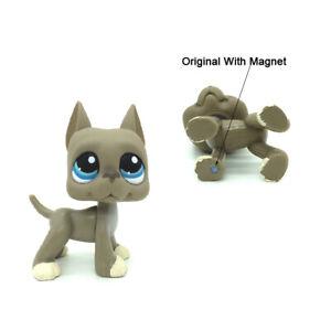 Lps Toys Littlest Pet Shop Grey Puppy Great Dane Dog 184 With White Blue Eyes 523156895585 Ebay
