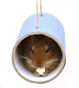 Chewchewbs-Blue-Small-pet-toy-degu-rat-gerbil-hamster-tube
