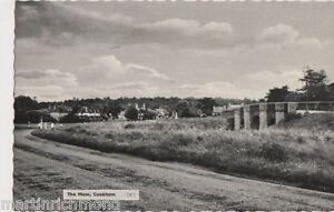 Cookham-The-Moor-Postcard-B508