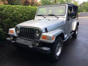 Jeep TJ Unlimited 2006, version allongée