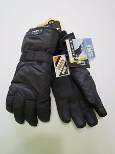 Auclair Alpine Ski Glove Mens w Thinsulate TM & Dritex TM Water Proof - Orbit 3