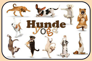 Perros-Dogs-Yoga-Letrero-de-Metal-Arqueado-Tin-Sign-20-X-30cm-CC0366