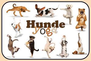 Chiens-Dogs-Yoga-Pancarte-en-Tole-Signe-Metal-Voute-Etain-20-X-30-cm-CC0366