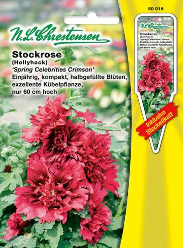Stockrose /'Spring Celebrities Crimson/' Alcea halbgefüllte Blüten  50016 Saatgut