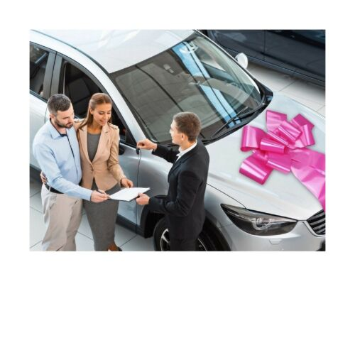 """23/"""" 1 Pack Large Car Bow with 2 Gold Accessory Bows Pink"""