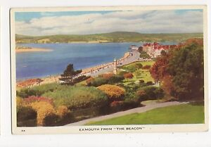 Exmouth-from-The-Beacon-Devon-Postcard-A905