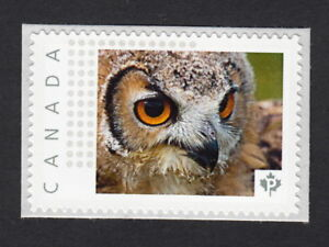 OWL-FACE-Canada-Post-Personalized-Picture-Postage-Stamp-MNH-2015-p15-01sn1