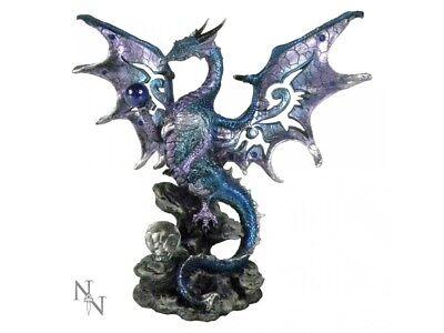 Dragon/'s Den 20.5cm
