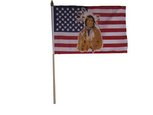 """12x18 12/""""x18/"""" Wholesale Lot of 100 State of Indiana Stick Flag wood Staff"""