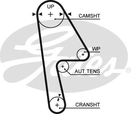 GATES 5593XS Timing Belt