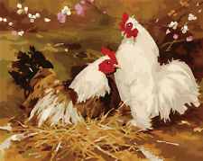 """DIY Acrylic 16x20"""" Paint By Number kit Oil Painting On Canvas Chicken Rooster S5"""