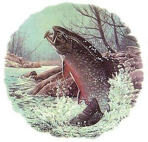 Trout-Fly-Fishing-River-Select-A-Size-Waterslide-Ceramic-Decals-Ox