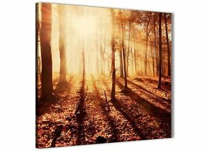 Autumn Leaves Forest Scenic Landscapes Canvas 1386 Orange Trees 120cm