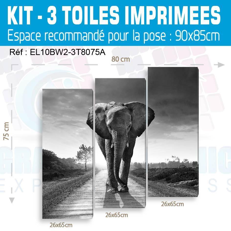 TABLEAU TABLEAU TABLEAU IMPRESSION IMAGE 53 MODELES - IMPRIMEE ANIMAUX ELEPHANT PAYASAGE deb24b