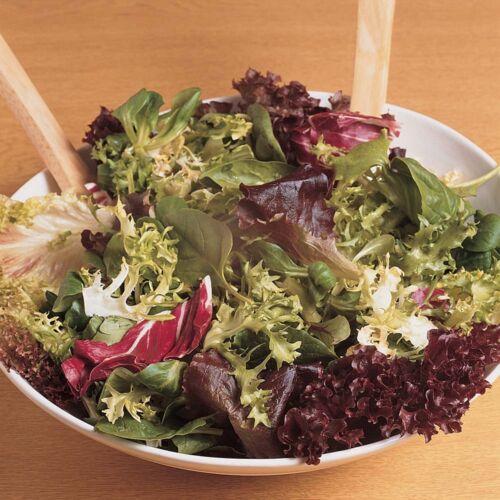 Seeds Сhampion of Salad Lettuce Lolo Rossa Red Vegetable Organic Russian Ukraine