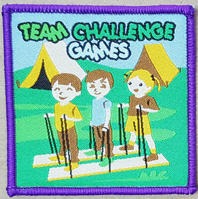 10 Grass sledging badge guide scout sport blanket patch patches badges boy girl