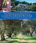 The Illustrated Olive Farm by Carol Drinkwater (Hardback, 2005)