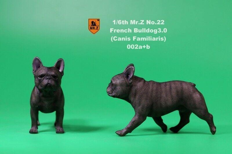 1 6 Mr. Z NO.022 Bulldog francés 3.0 figura Canis familiaris 002a+b Modelo Juguete